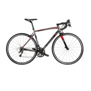 Wilier-Montegrappa-en-tiagra-gris Anjana Bike